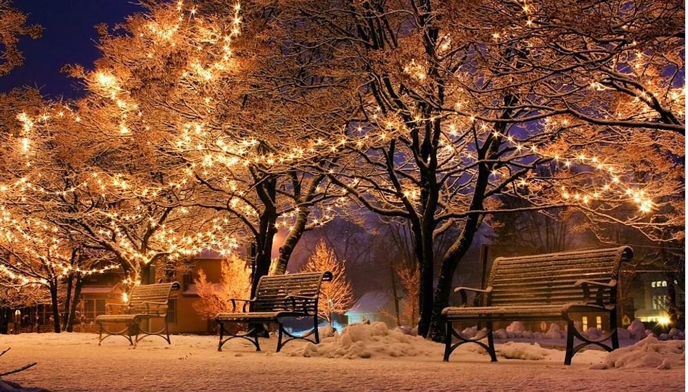 Liberale Werte als Maßstab politischen Handelns – Gedanken zu Weihnachten und zum neuen Jahr